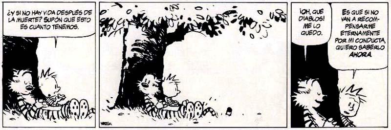 Calvin y Hobbes, tira cómica