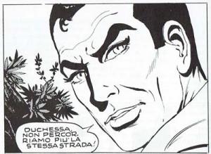 La perversidad del personaje es puesta de relieve, en esta viñeta de Diabolik, de Flavio Bozzoli y Lino Jeva, gracias al Primer Plano de su rostro, que hace perfectamente visibles sus ojos y unas cejas inquietantes.